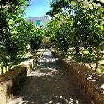 Foto de Casa Mariantonia