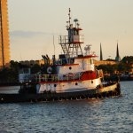 Tugs are everywhere on the Elizabeth River