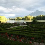view from the schloss
