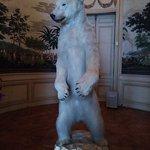 ours empaillé