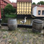 Photo of Den Gamle By