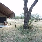 The luxury tented camp at Kati Kati was awesome, it even had flushing toilets and hot showers!