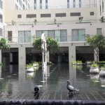 Central Courtyard at Jaipur Marriot - Infinity pool for the pigeons!