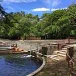 Photo of Haller Park