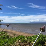Breadfruit tree and low tide at the hotel