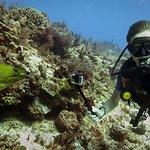 Photo de Deep Blue Scuba Diving