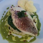 Sea bream fillet risotto