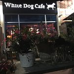 White Dog Cafe - Wayne Foto