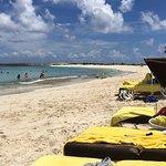 The Cove Hotel Beach, Atlantis, Paradise Island, Bahamas: Plenty of Shaded Recliners