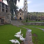 Photo of Hacienda Santa Maria Regla