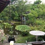 Foto de Yamabuki