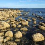Mussel Beach Campground照片