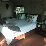 Tent is under a thatched roof with full bathroom and shower. Heating and cooling