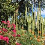 Foto de Hacienda Del Sol Guest Ranch Resort