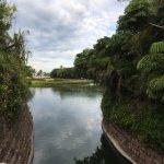 Foto de Mayan Palace Nuevo Vallarta