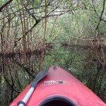 Photo of Tour the Glades