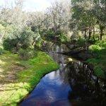 Kondil Park Recreation Area