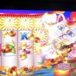 Cat Bonus Round, Slot Machine, Atlantis Casino, Reno, NV