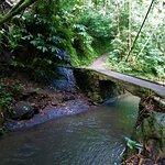 Munduk Waterfall trek