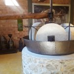 Museum of the Olive and Greek Olive Oil. Olive Press.