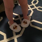 Cute slippers they gave my son