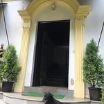 Blackie, the hotel dog!
