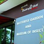 Samui Butterfly Garden Foto