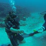 Photo of Mango Dive & Bungalow