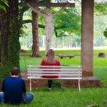 Jardim externo da ala C... espaço para oração, meditação, contemplação.