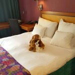 Decoration of Clarion hotel room - the dusty puppies are for sale at hotel front desk.
