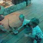 Photo de Corfu Aquarium