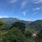 Photo de La Montana y el Valle Coffee Estate Inn