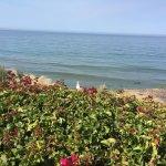 Bilde fra Dolphin Bay Resort & Spa