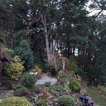 Paila Co Gardens