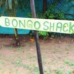 Way to Shack + Beach
