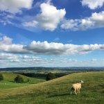 Bredon Hill