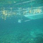 Photo of Japanese Wreck Marine Sanctuary