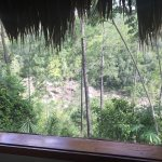 "Mayan breakfast, jungle hike, river ""beach"" view, inside our room and view from our room, and a"