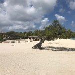 Eagle Beach Foto