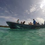 Snorkeling with ROA