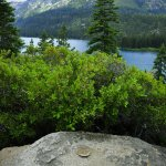 Emerald Bay State Park, Lake Tahoe, California, Coastal and Geodetic marker view