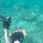 Underwater more adventures await!