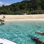 Photo of Robert's Island Adventures