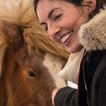 Meeting the Icelandic Horse