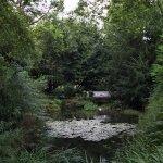 Photo de Jardin Botanico Atlantico