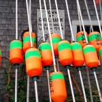 a bunch of buoys