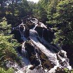 Foto de Swallow Falls