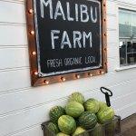 Photo of Malibu Farm