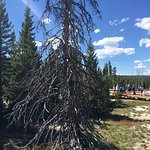 Photo de West Thumb Geyser Basin