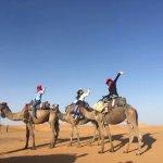 Photo of Camel Safaries
